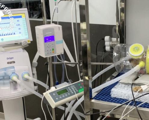 ventilación no invasiva Servet Urgencias